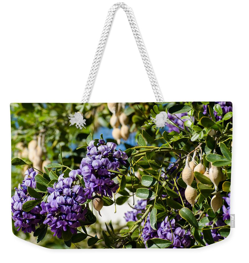 Texas Weekender Tote Bag featuring the photograph Texas Mountain Laurel Sophora Flowers And Mescal Beans by Michael Moriarty