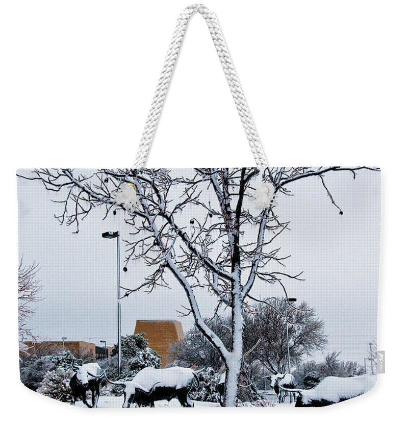 Heritage Grounds Weekender Tote Bag featuring the photograph Heritage Grounds by Mae Wertz