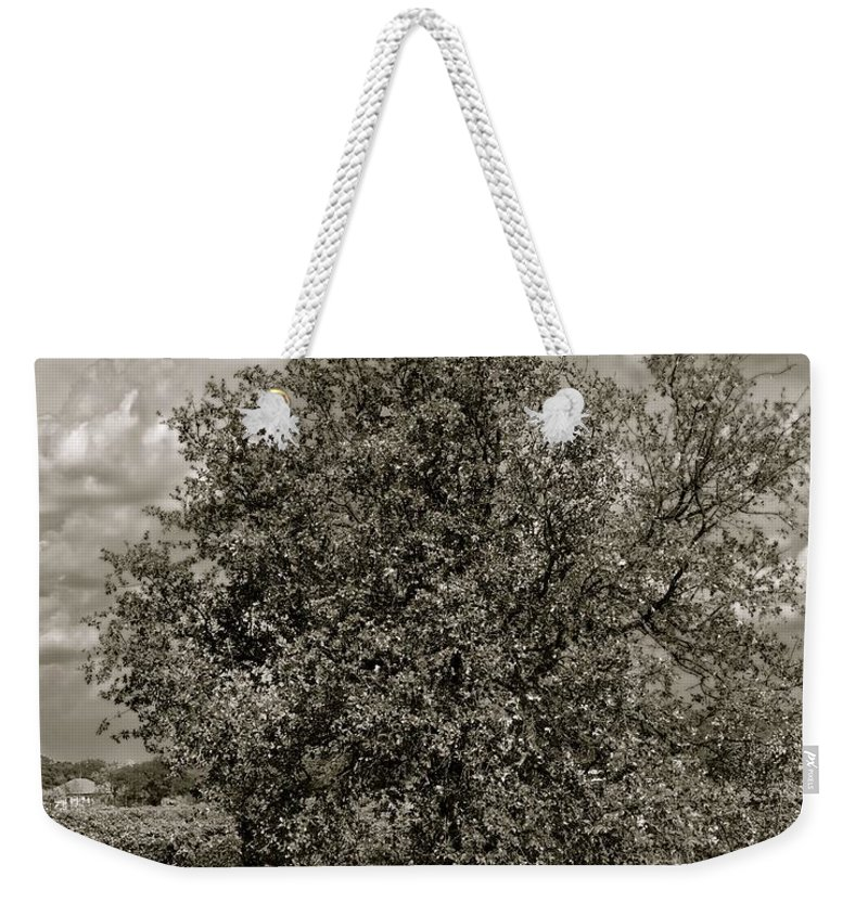 Black And White Photography Weekender Tote Bag featuring the photograph Texas Winery Tree And Vineyard by Kristina Deane
