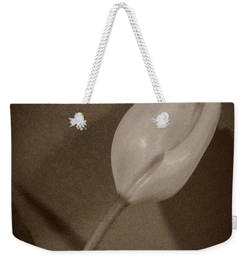 Tulip Weekender Tote Bag featuring the photograph That There Tulip by David Stone