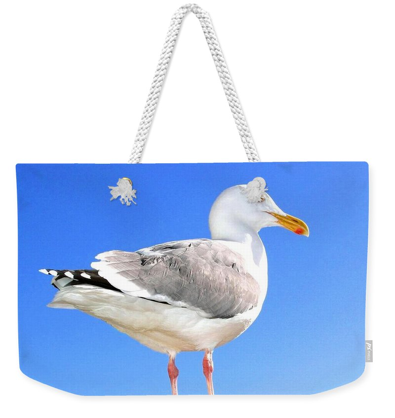 The Admiral 2 Weekender Tote Bag featuring the photograph The Admiral 2 by Will Borden
