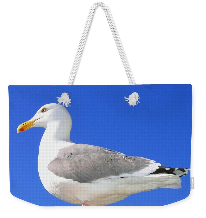 The Admiral Weekender Tote Bag featuring the photograph The Admiral by Will Borden