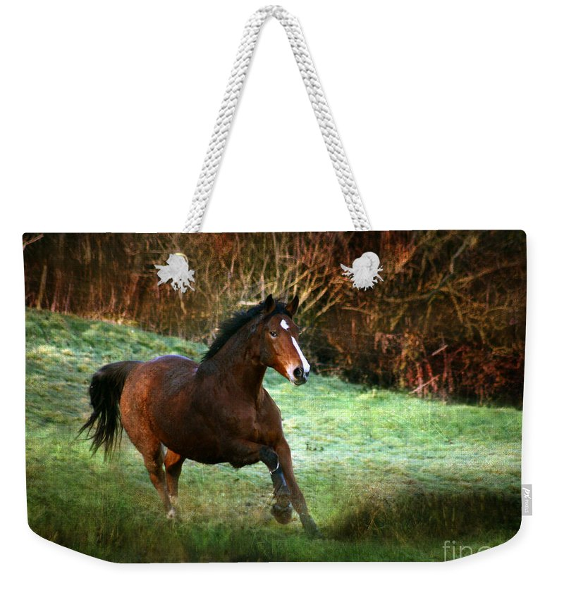 Autumn Weekender Tote Bag featuring the photograph The Autumn by Angel Ciesniarska