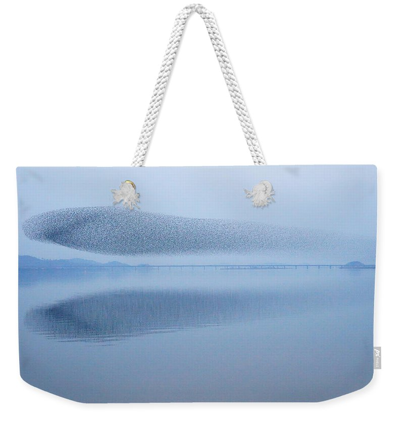 Scenics Weekender Tote Bag featuring the photograph The Baikal Teals by Penboy
