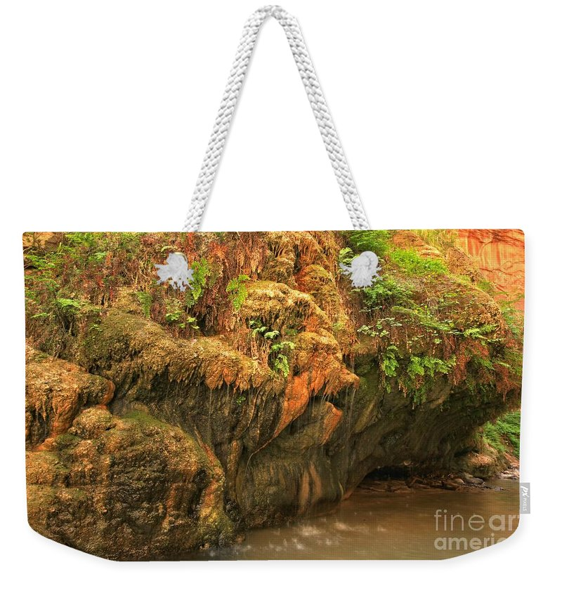 Zion Narrows Weekender Tote Bag featuring the photograph The Bearded Garden by Adam Jewell