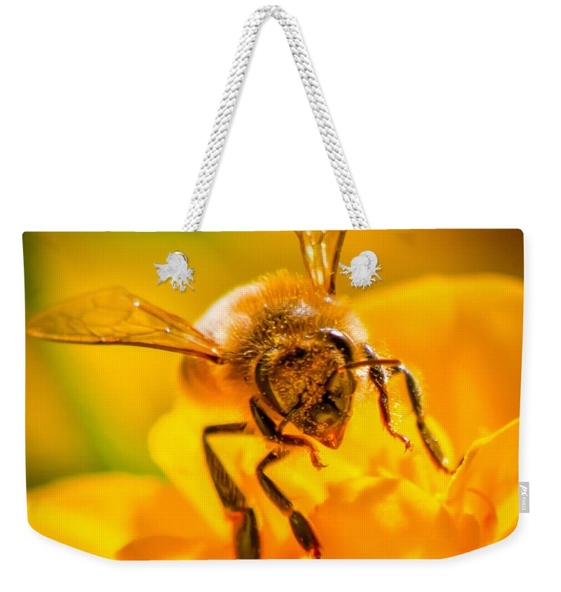 Bees Weekender Tote Bag featuring the photograph The Bee Gets Its Pollen by Bob Orsillo