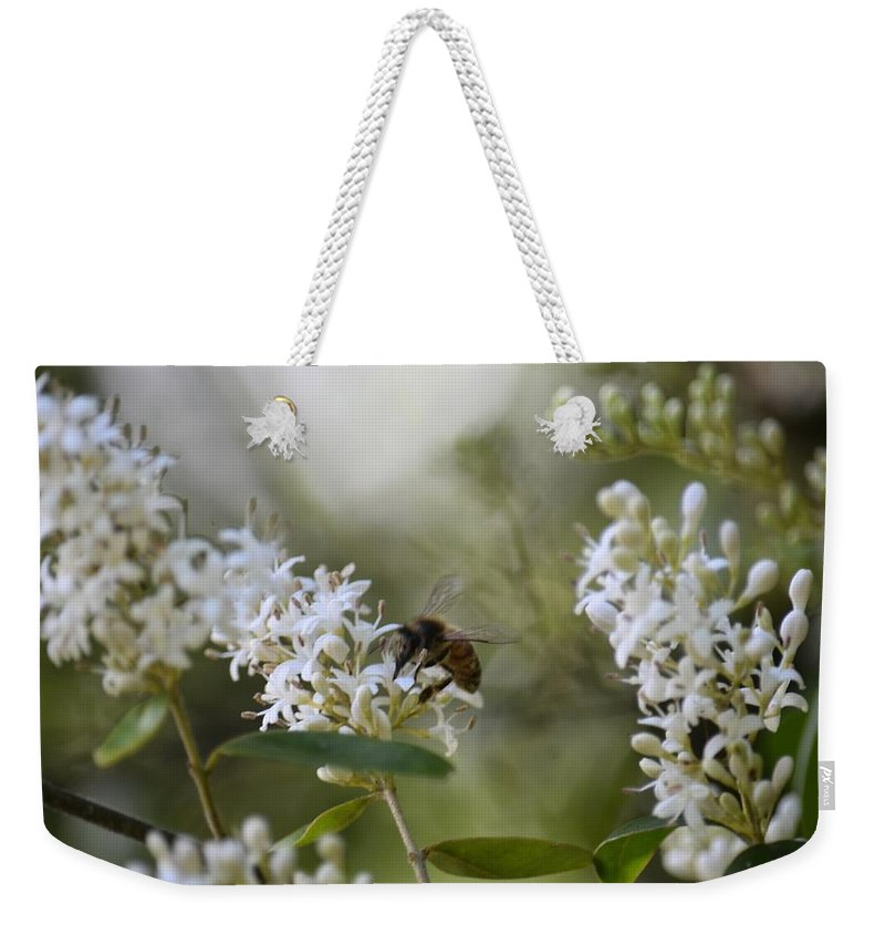 The Bee Weekender Tote Bag featuring the photograph The Bee by Maria Urso
