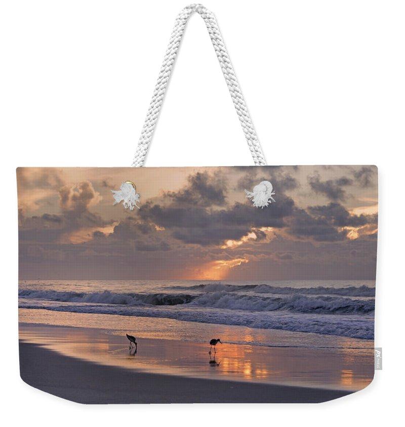 Sandpiper Weekender Tote Bags