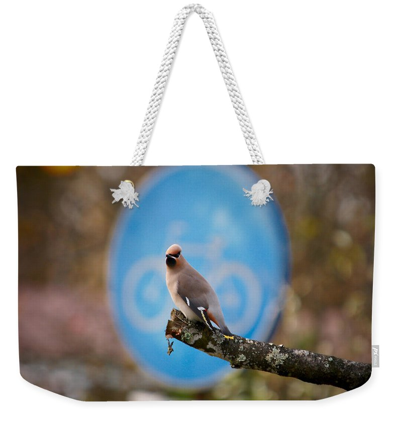 Autumn Weekender Tote Bag featuring the photograph The Bird Without A Bike by Jouko Lehto