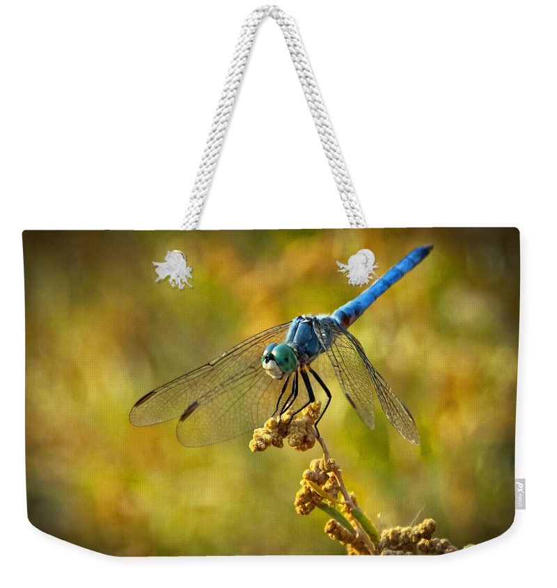 Blue Dragonfly Weekender Tote Bag featuring the photograph The Blue Dragonfly by Saija Lehtonen