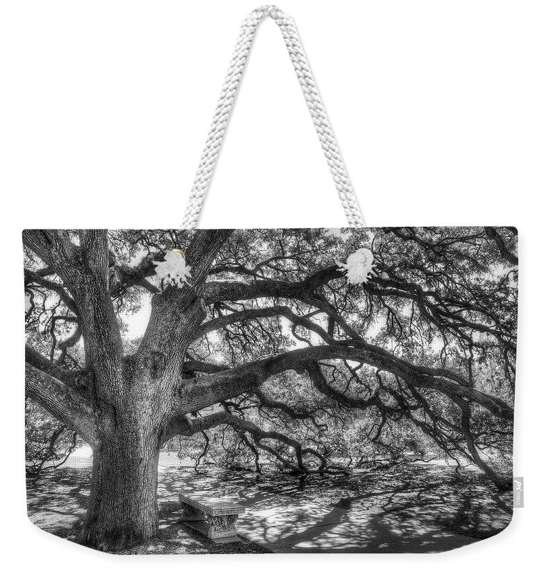 Tree Weekender Tote Bag featuring the photograph The Century Oak by Scott Norris