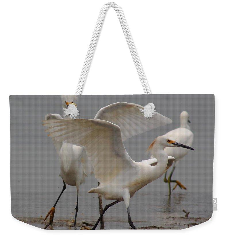 Cattle Egret Weekender Tote Bags