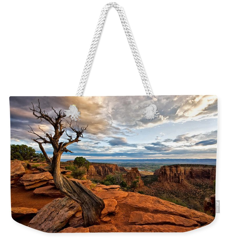 Colorado National Monument Weekender Tote Bag featuring the photograph The Crooked Old Tree by Ronda Kimbrow