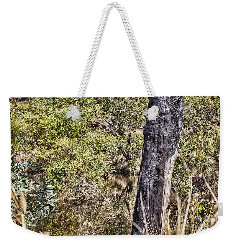 Death Weekender Tote Bag featuring the photograph The Death Of A Tree V4 by Douglas Barnard