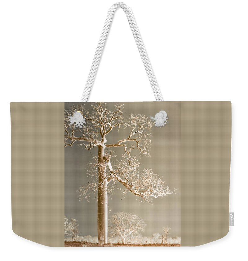 Landscapes Weekender Tote Bag featuring the photograph The Dreaming Tree by Holly Kempe