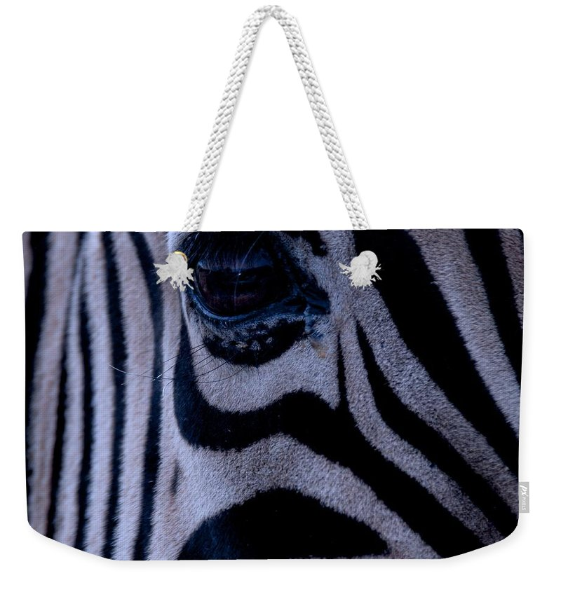 Zebra Weekender Tote Bag featuring the photograph The Eye Of The Zebra by Eric Tressler