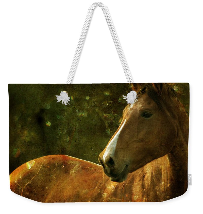 Horse Weekender Tote Bag featuring the photograph The Fairytale Horse by Angel Ciesniarska