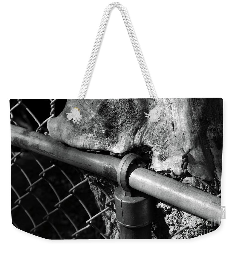 Fence Weekender Tote Bag featuring the photograph The Fence Eating Tree by John Herzog