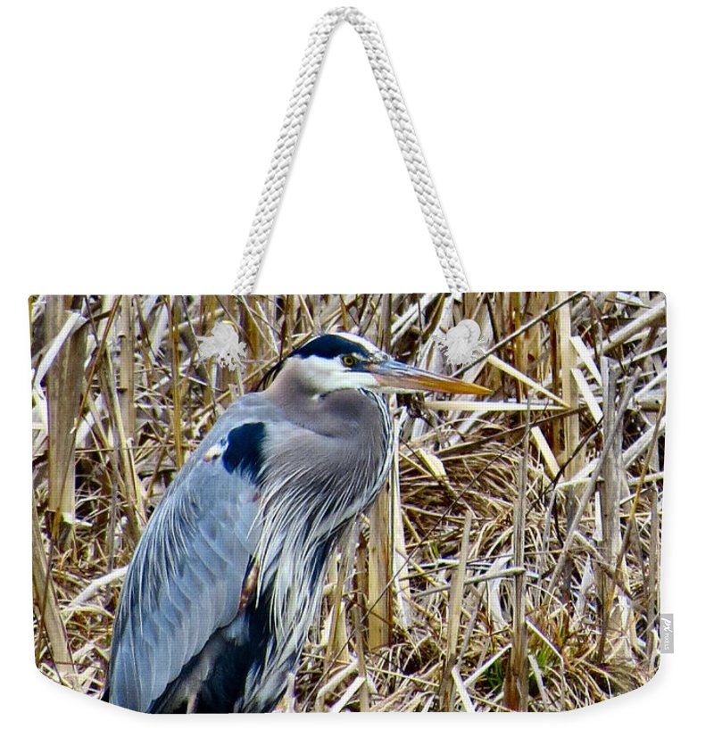 Big Weekender Tote Bag featuring the photograph The Fisherman by Art Dingo