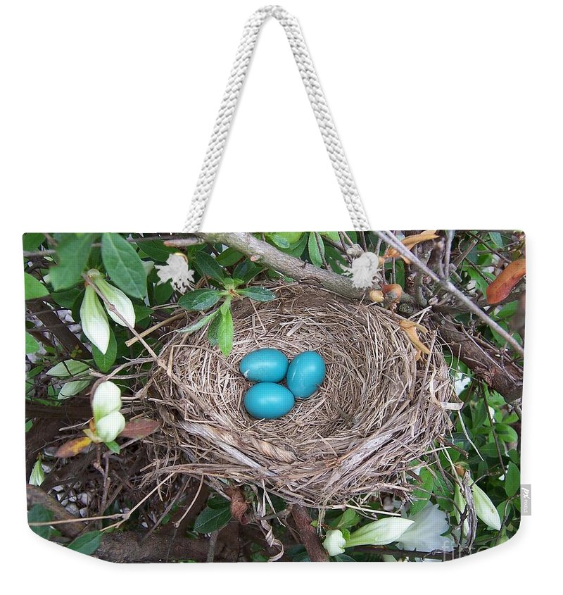 Blue Eggs Weekender Tote Bag featuring the photograph The Future's Nest Egg by Julie Brugh Riffey