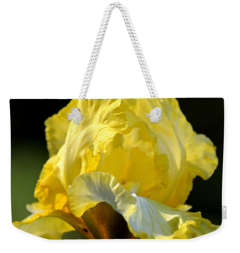 The Golden Iris Weekender Tote Bag featuring the photograph The Golden Iris by Maria Urso