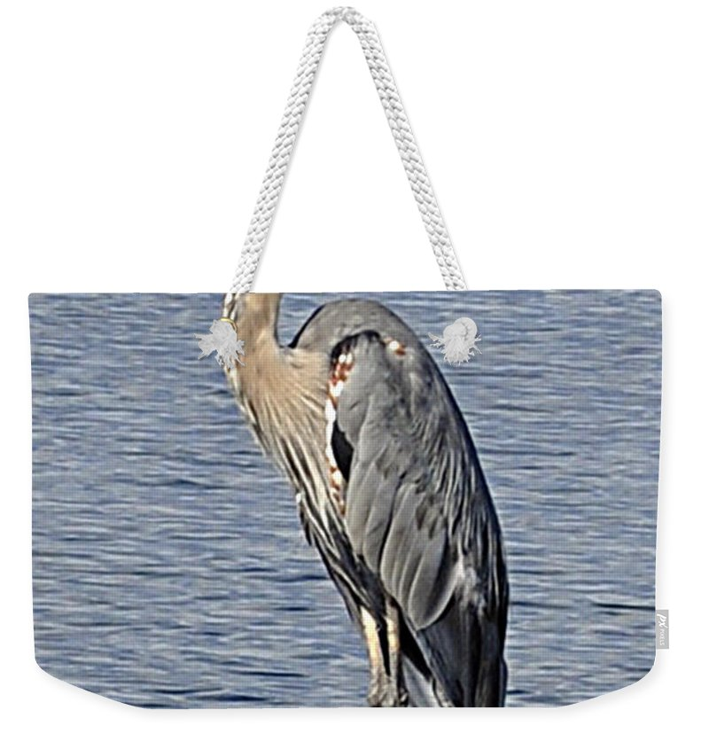 Great Blue Heron Weekender Tote Bag featuring the photograph The Great Blue Heron Photo by Verana Stark