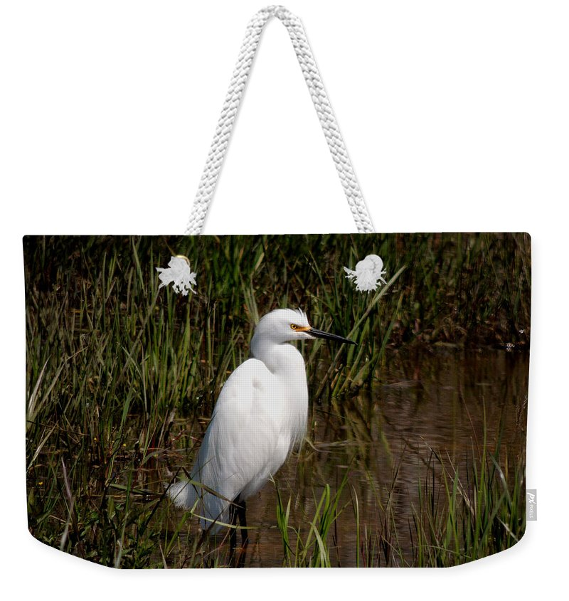 The Great White Heron Weekender Tote Bag featuring the photograph The Great White Heron by Kim Pate