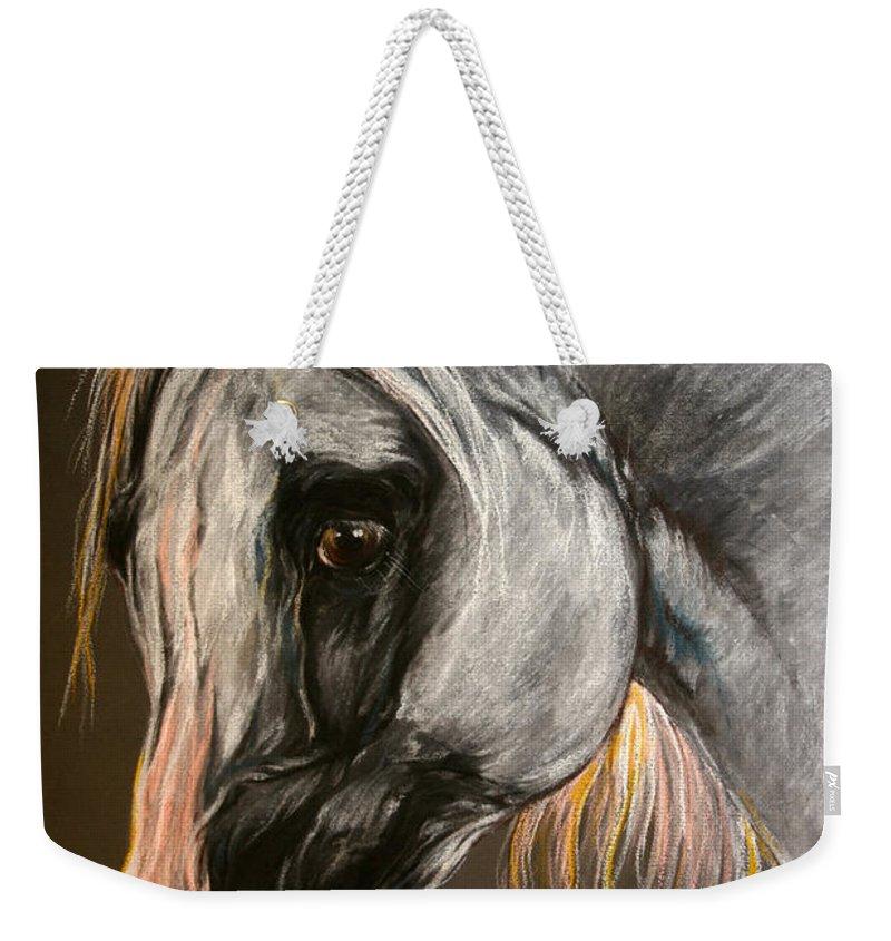 Horse Weekender Tote Bag featuring the drawing The Grey Arabian Horse by Angel Ciesniarska