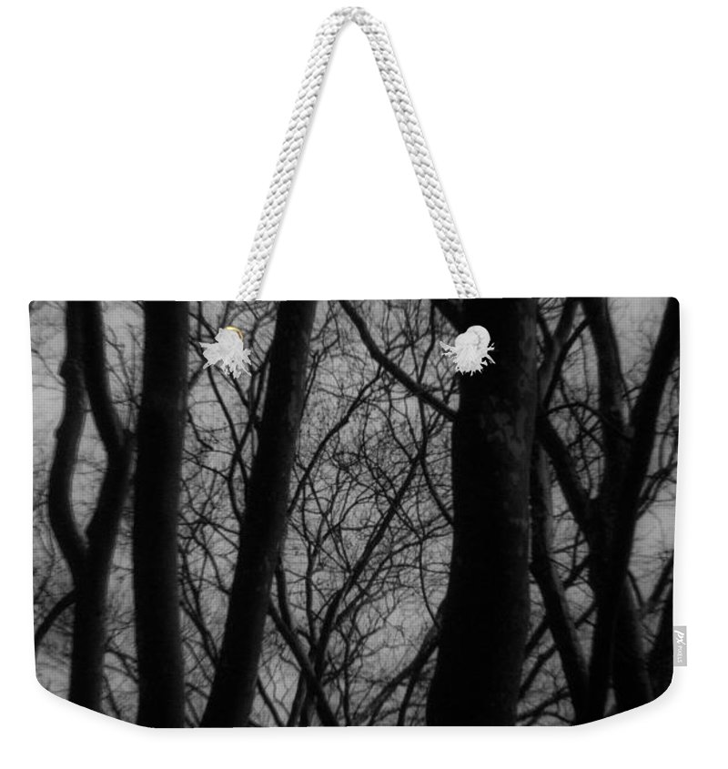 Trees Weekender Tote Bag featuring the photograph The Haunting by Kathleen Odenthal