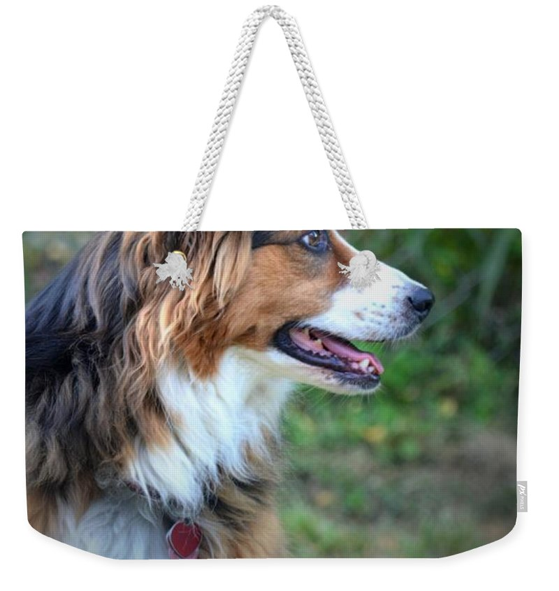 The Heart Of Dixie Weekender Tote Bag featuring the photograph The Heart Of Dixie by Maria Urso