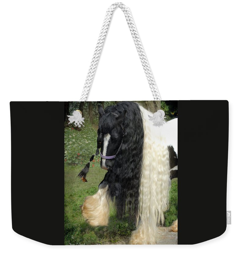 Butterfly Weekender Tote Bag featuring the photograph The Hitcher by Fran J Scott