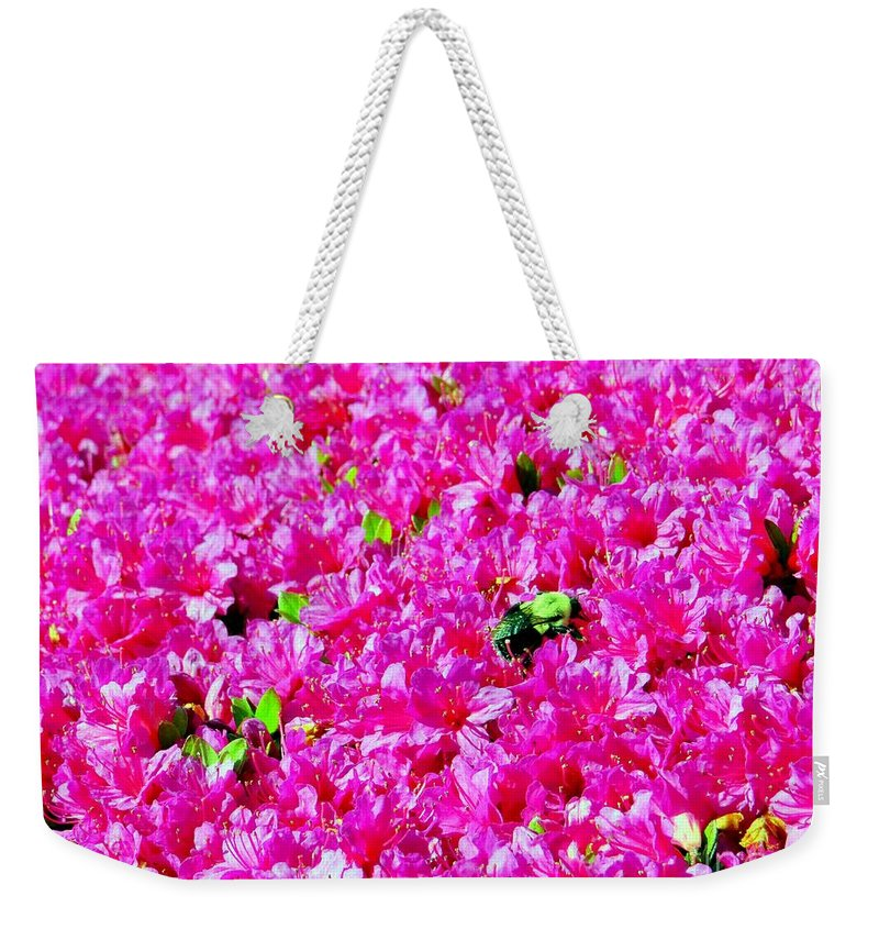 Bee Weekender Tote Bag featuring the photograph The Honey Bee by Ed Weidman