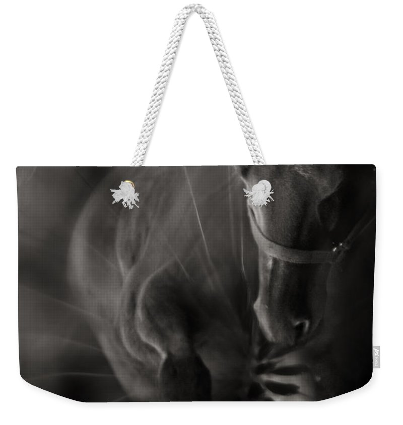 Abstract Weekender Tote Bag featuring the photograph The Horse And Dandelion by Angel Tarantella