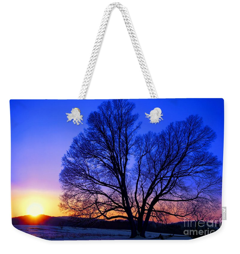 Valley Weekender Tote Bag featuring the photograph The Incomparable Patience And Fidelity by Olivier Le Queinec