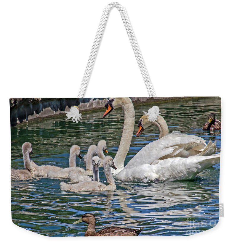 Kate Brown Weekender Tote Bag featuring the photograph The Insular Family by Kate Brown