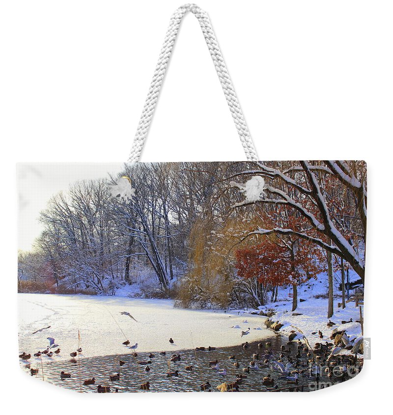 Winter Weekender Tote Bag featuring the photograph The Lake In Winter by Dora Sofia Caputo Photographic Design and Fine Art