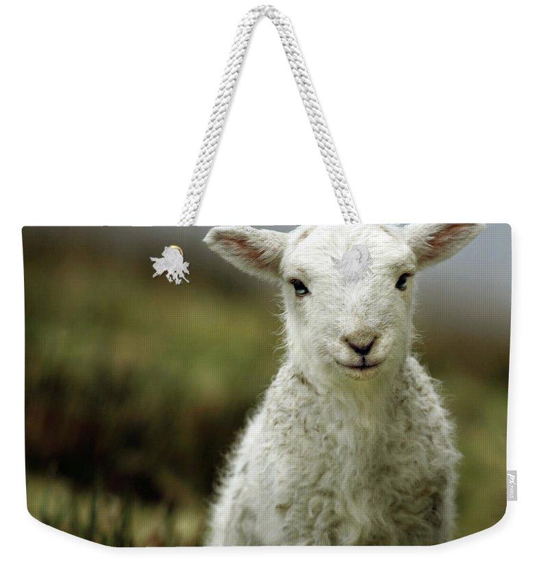 Wales Photographs Weekender Tote Bags