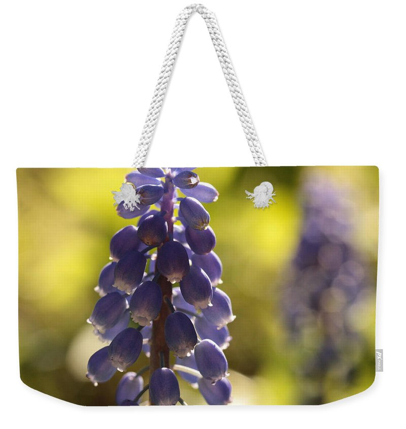 Grape Hyacinth Weekender Tote Bag featuring the photograph The Lighter Fantastic by Connie Handscomb