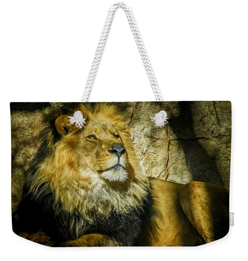 Lion Weekender Tote Bag featuring the photograph The Lion by Ernie Echols