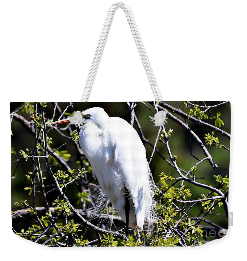 Great White Heron Weekender Tote Bag featuring the photograph The Lookout by Elizabeth Winter