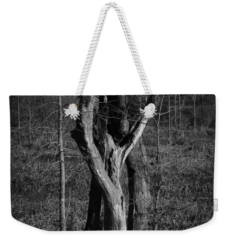 Black Weekender Tote Bag featuring the photograph The Lovers Number 2 by Phil Penne