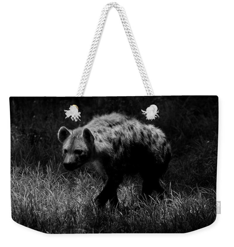 Hyena Weekender Tote Bag featuring the photograph The Menace by Tracey Beer