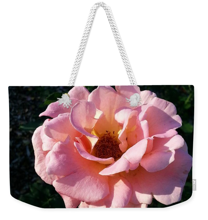 Pink Weekender Tote Bag featuring the photograph The Middle Child by Caryl J Bohn