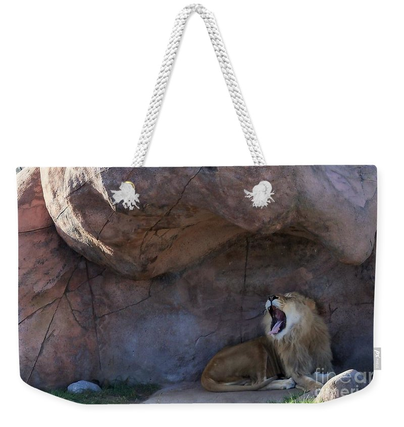 Wild Cat Weekender Tote Bag featuring the photograph The Mighty King Roars by Lingfai Leung
