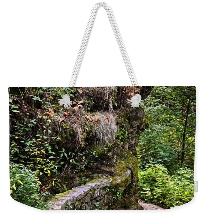 Oregon Weekender Tote Bag featuring the photograph The Narrow Path by Image Takers Photography LLC - Laura Morgan