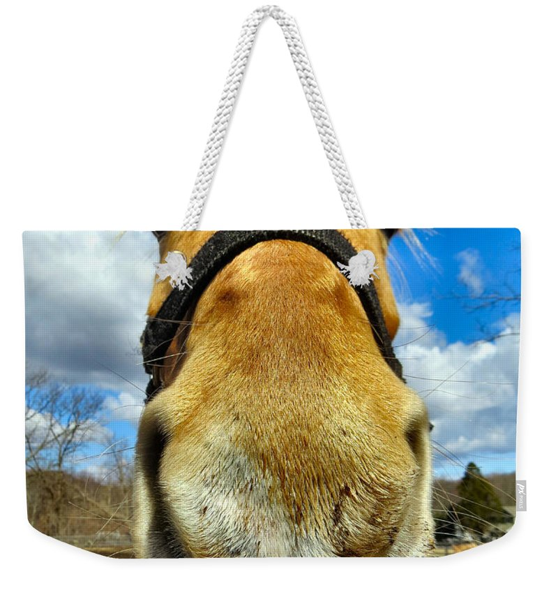 Horse Weekender Tote Bag featuring the photograph The Nose Knows by Art Dingo