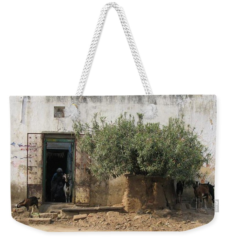 Goats Weekender Tote Bag featuring the photograph The Old Women And The Goats by David Pantuso