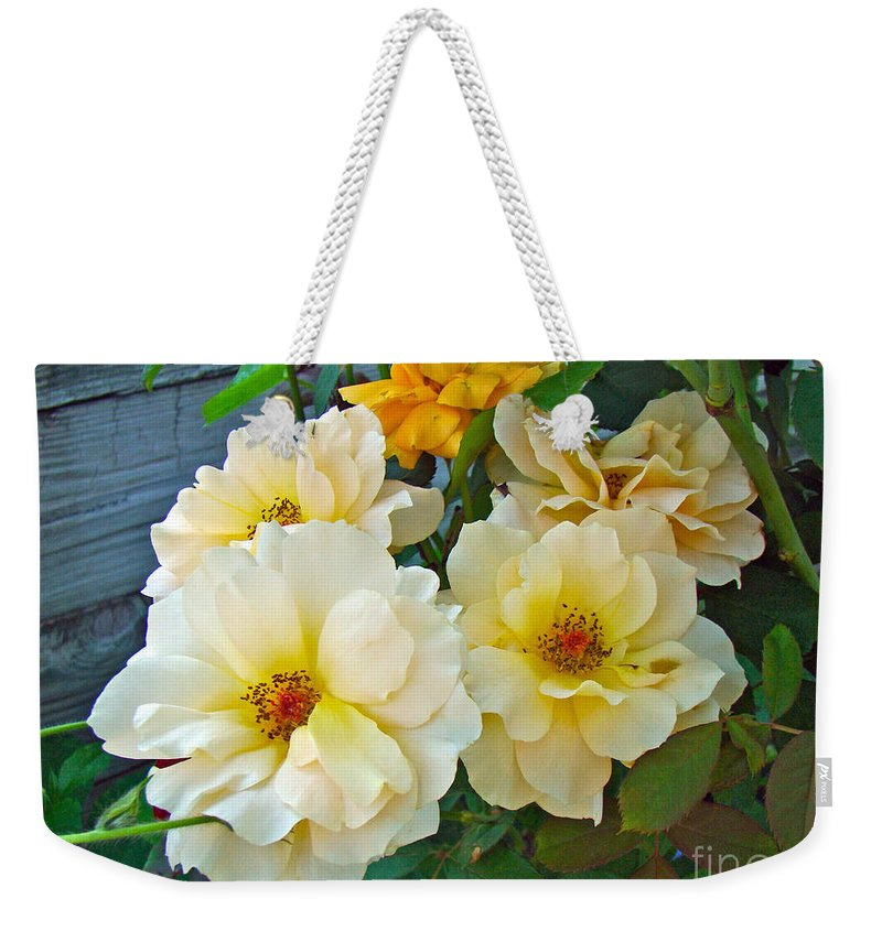 Rose Weekender Tote Bag featuring the photograph The Palest Yellow Just Like Lemon Sherbet by Mother Nature