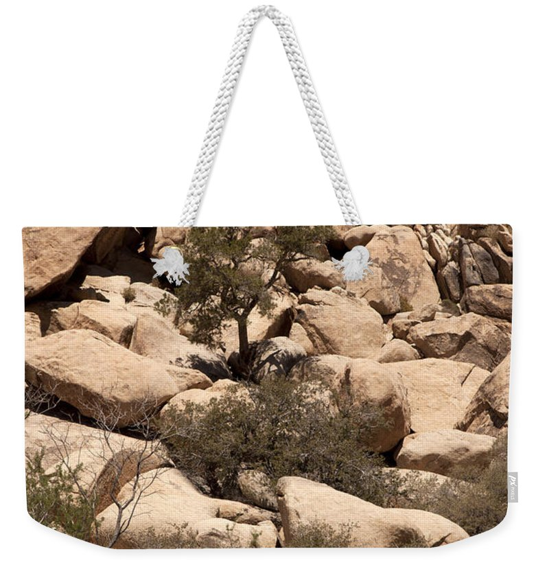 joshua Tree National Park Weekender Tote Bag featuring the photograph The Pile Is Home by Amanda Barcon