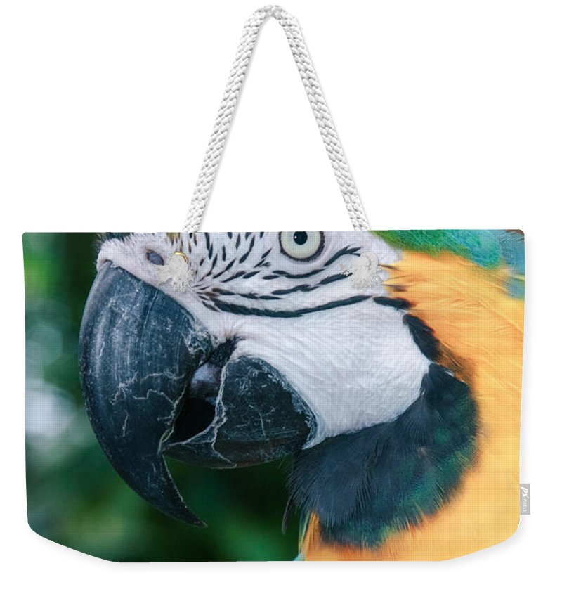 Hawaii Weekender Tote Bag featuring the photograph The Poetry Of Nature by Sharon Mau